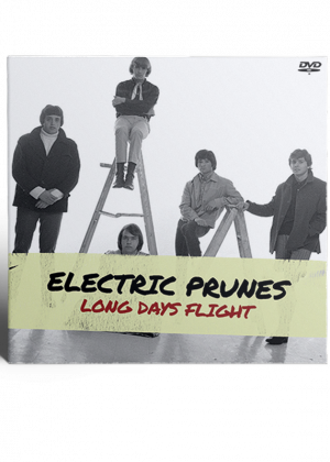 Electric Prunes - Long Days Flight cover